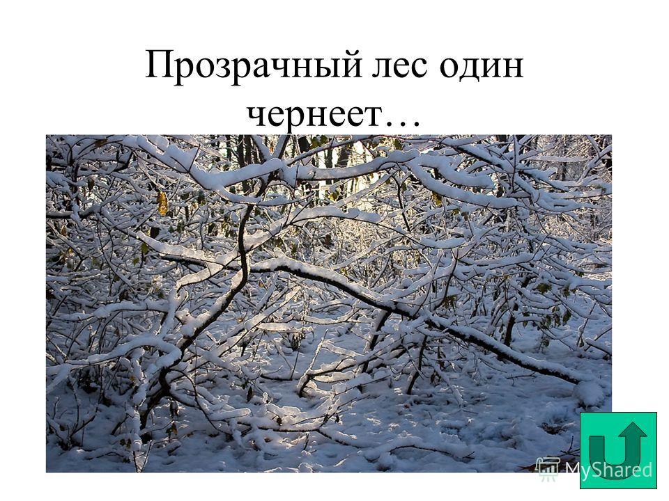 Прозрачный лес один чернеет…