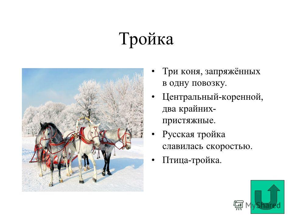 Тройка Три коня, запряжённых в одну повозку. Центральный-коренной, два крайних- пристяжные. Русская тройка славилась скоростью. Птица-тройка.