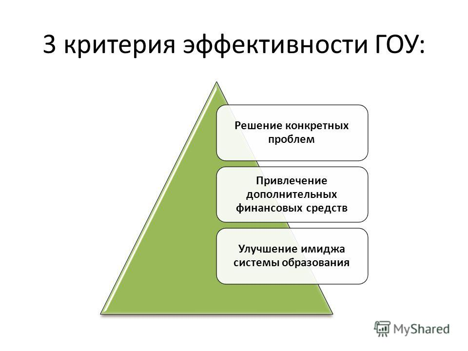 3 критерия эффективности ГОУ: Решение конкретных проблем Привлечение дополнительных финансовых средств Улучшение имиджа системы образования