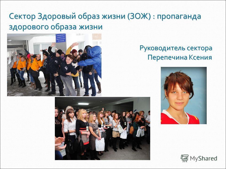 Сектор Здоровый образ жизни (ЗОЖ) : пропаганда здорового образа жизни Руководитель сектора Перепечина Ксения