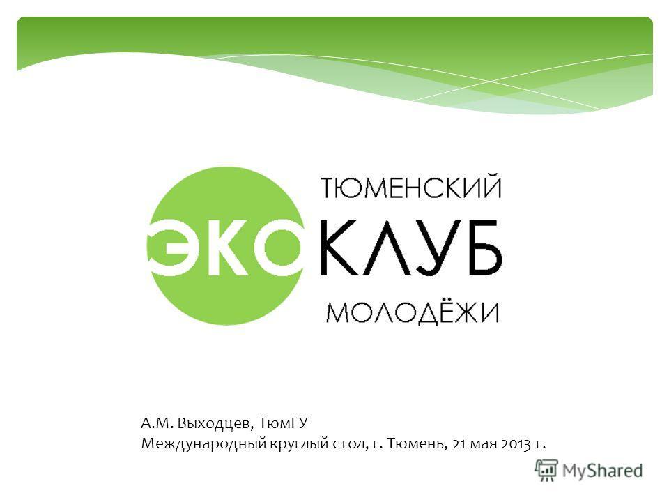 А.М. Выходцев, ТюмГУ Международный круглый стол, г. Тюмень, 21 мая 2013 г.