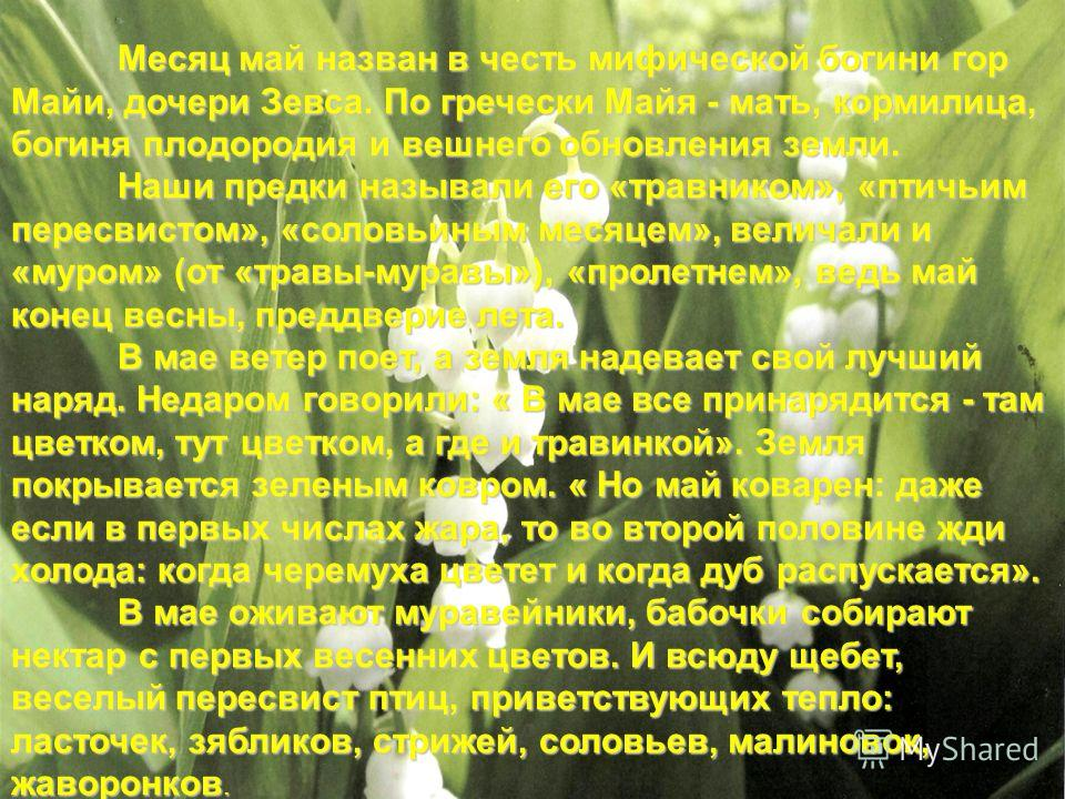 Месяц май назван в честь мифической богини гор Майи, дочери Зевса. По гречески Майя - мать, кормилица, богиня плодородия и вешнего обновления земли. Наши предки называли его «травником», «птичьим пересвистом», «соловьиным месяцем», величали и «муром»