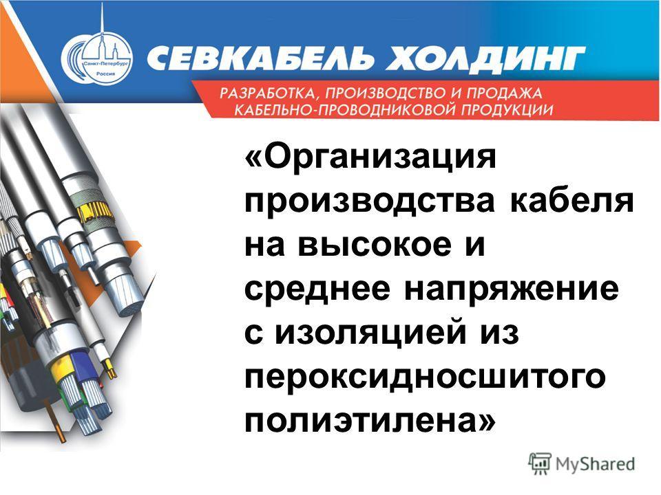 «Организация производства кабеля на высокое и среднее напряжение с изоляцией из пероксидносшитого полиэтилена»