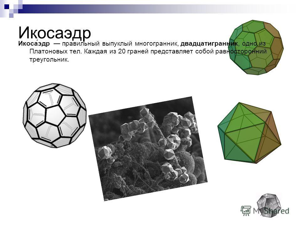 Икосаэдр Икоса́эдр правильный выпуклый многогранник, двадцатигранник, одно из Платоновых тел. Каждая из 20 граней представляет собой равносторонний треугольник.