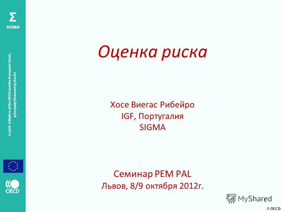© OECD A joint initiative of the OECD and the European Union, principally financed by the EU Σ SIGMA Оценка риска Хосе Виегас Рибейро IGF, Португалия SIGMA Семинар PEM PAL Львов, 8/9 октября 2012г. 1