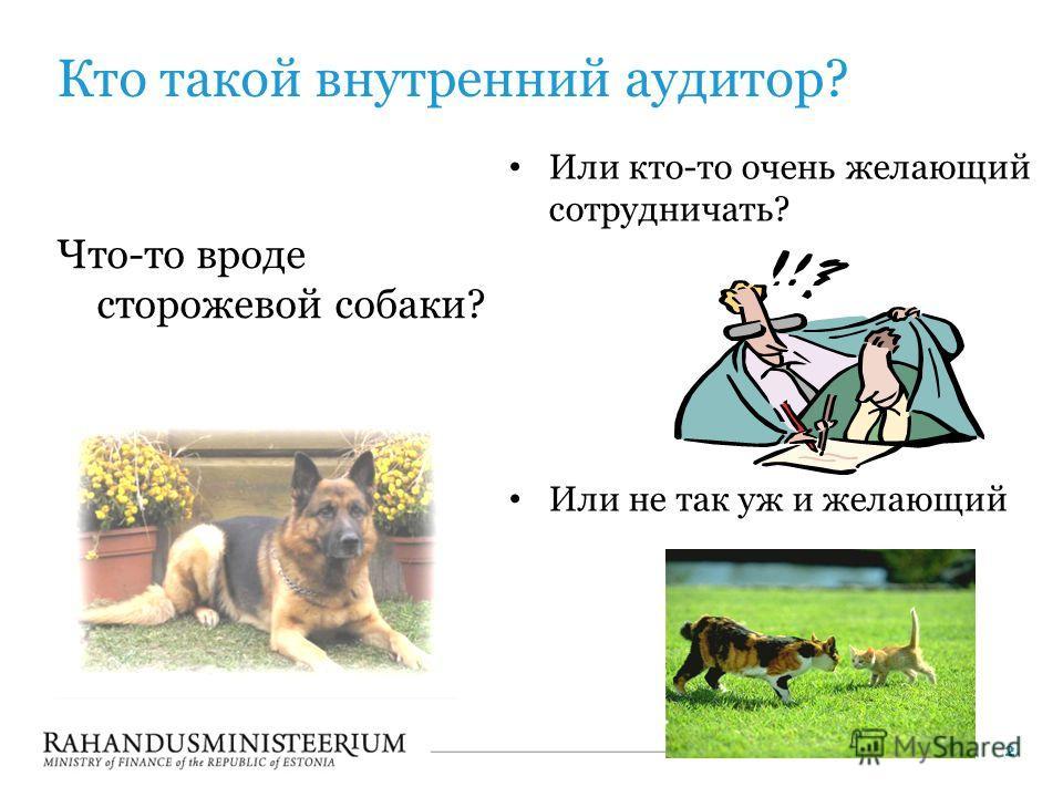 Кто такой внутренний аудитор? Что-то вроде сторожевой собаки? Или кто-то очень желающий сотрудничать? Или не так уж и желающий 2