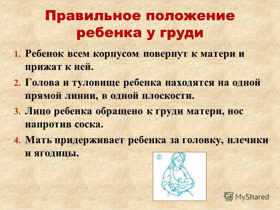 Правильное положение ребенка у груди 1. 1. Ребенок всем корпусом повернут к матери и прижат к ней. 2. 2. Голова и туловище ребенка находятся на одной прямой линии, в одной плоскости. 3. 3. Лицо ребенка обращено к груди матери, нос напротив соска. 4.