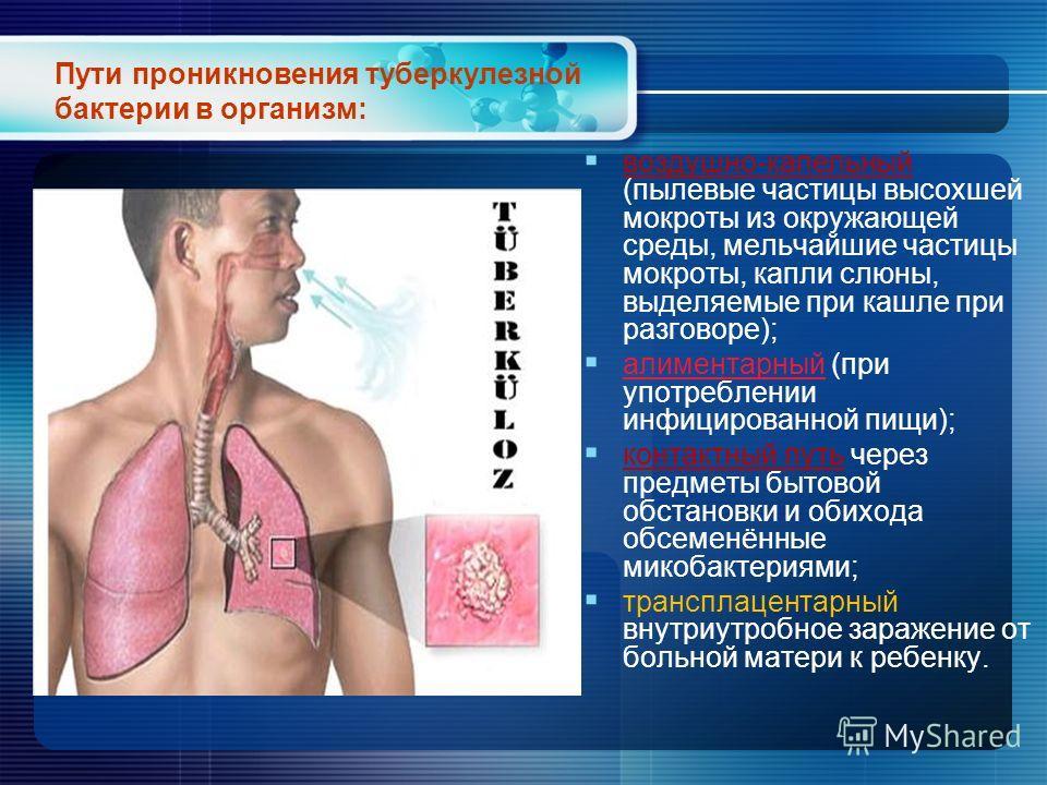 Пути проникновения туберкулезной бактерии в организм: воздушно-капельный (пылевые частицы высохшей мокроты из окружающей среды, мельчайшие частицы мокроты, капли слюны, выделяемые при кашле при разговоре); алиментарный (при употреблении инфицированно