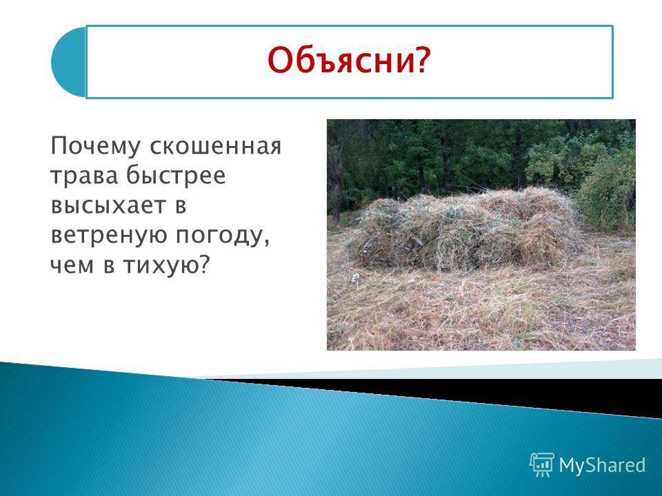 Объясни? Почему скошенная трава быстрее высыхает в ветреную погоду, чем в тихую?