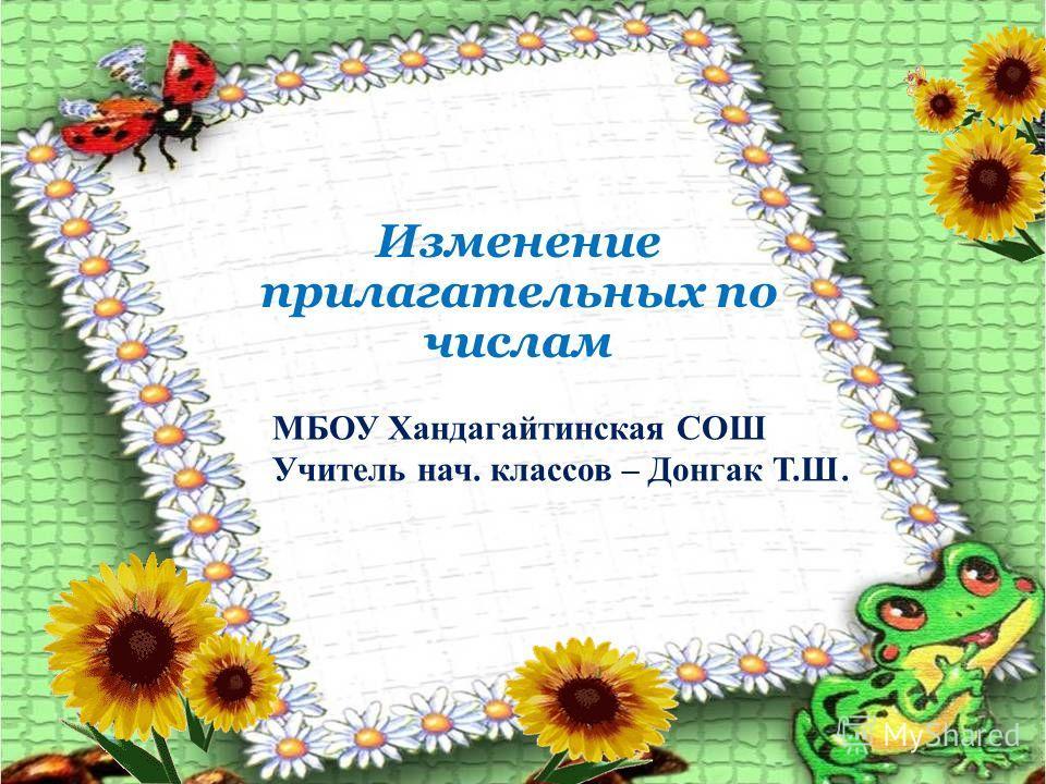 Изменение прилагательных по числам МБОУ Хандагайтинская СОШ Учитель нач. классов – Донгак Т.Ш.