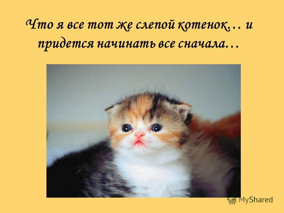 Что я все тот же слепой котенок… и придется начинать все сначала…
