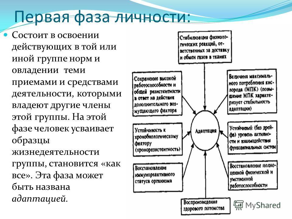 Первая фаза личности: Состоит в освоении действующих в той или иной группе норм и овладении теми приемами и средствами деятельности, которыми владеют другие члены этой группы. На этой фазе человек усваивает образцы жизнедеятельности группы, становитс
