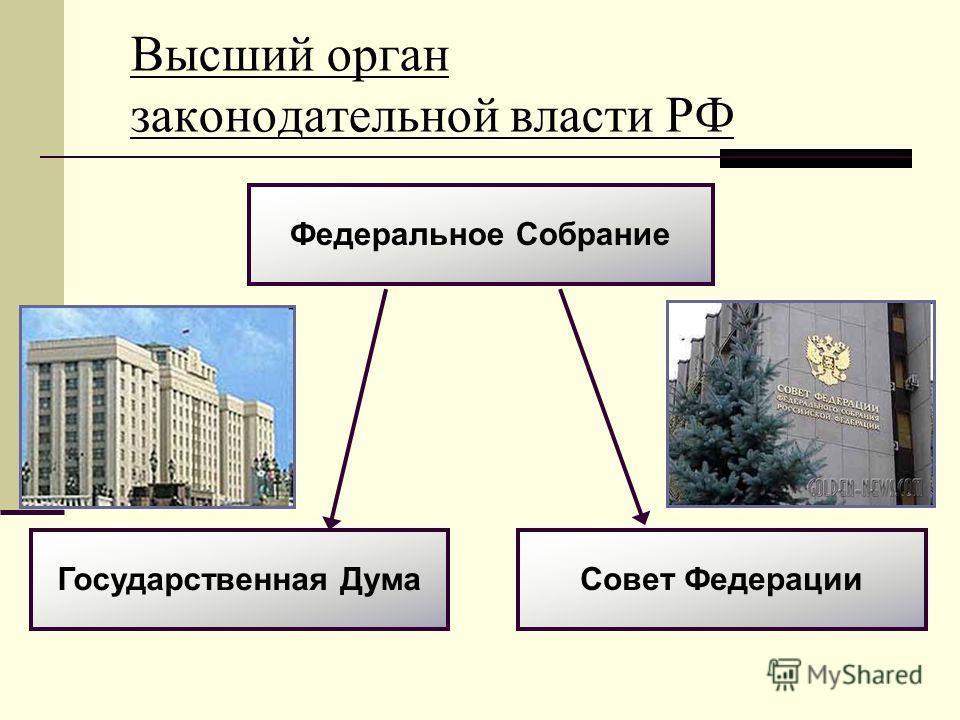 Высший орган законодательной власти РФ Федеральное Собрание Государственная Дума Совет Федерации