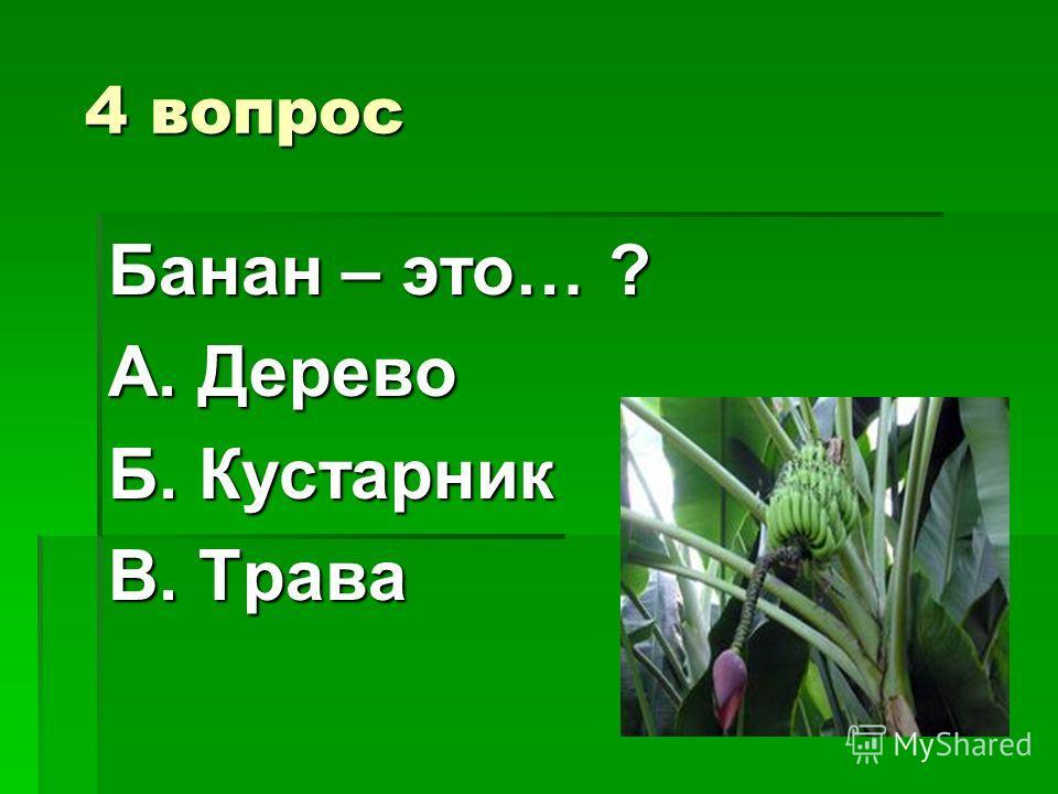 Ответ: Ответ: Огурцы Огурцы
