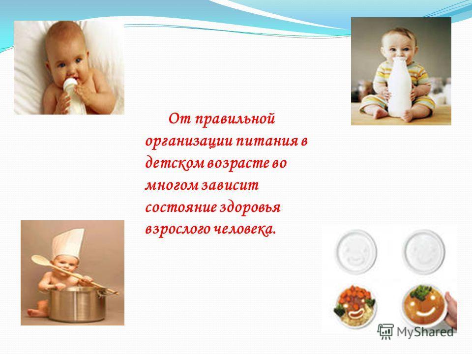 От правильной организации питания в детском возрасте во многом зависит состояние здоровья взрослого человека.