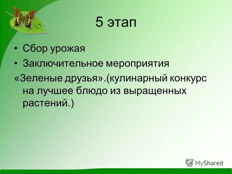 5 этап Сбор урожая Заключительное мероприятия «Зеленые друзья».(кулинарный конкурс на лучшее блюдо из выращенных растений.)