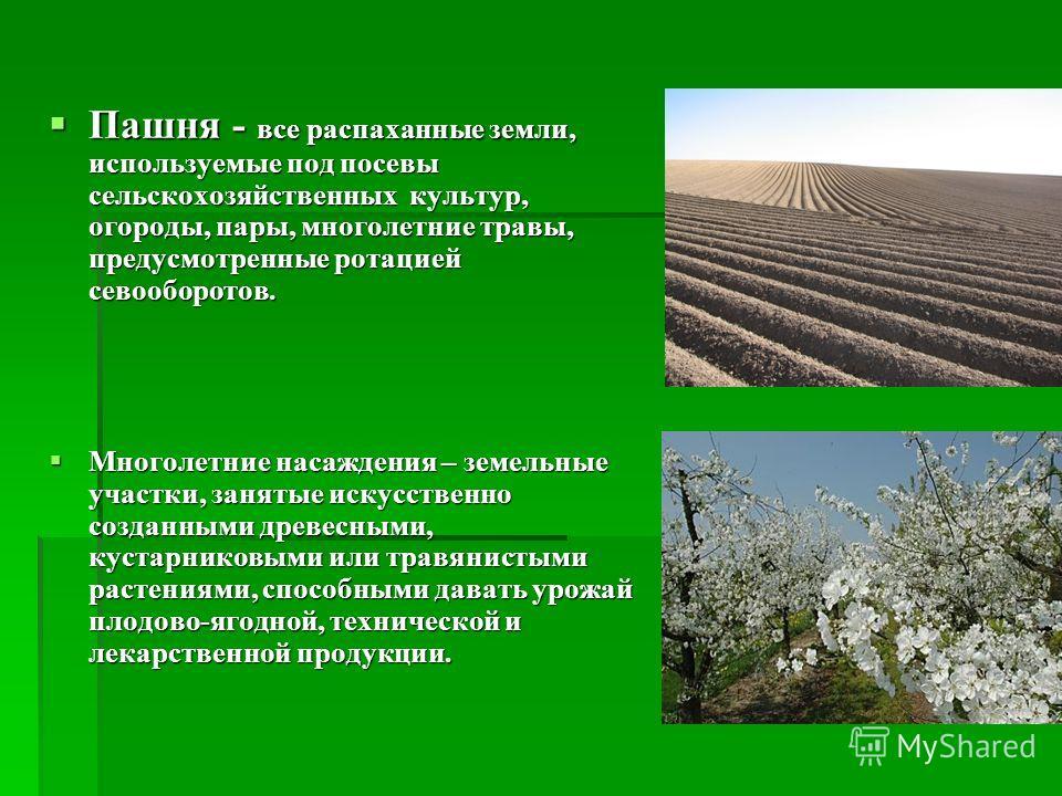Пашня - все распаханные земли, используемые под посевы сельскохозяйственных культур, огороды, пары, многолетние травы, предусмотренные ротацией севооборотов. Пашня - все распаханные земли, используемые под посевы сельскохозяйственных культур, огороды