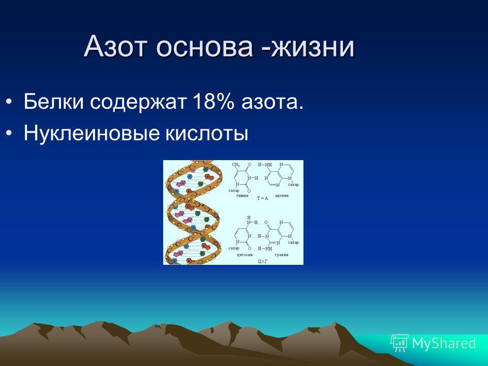 Азот основа -жизни Белки содержат 18% азота. Нуклеиновые кислоты