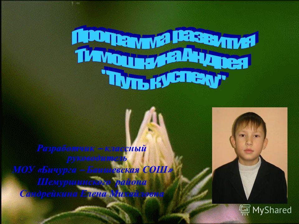 Разработчик – классный руководитель МОУ « Бичурга – Баишевская СОШ » Шемуршинского района Сандрейкина Елена Михайловна
