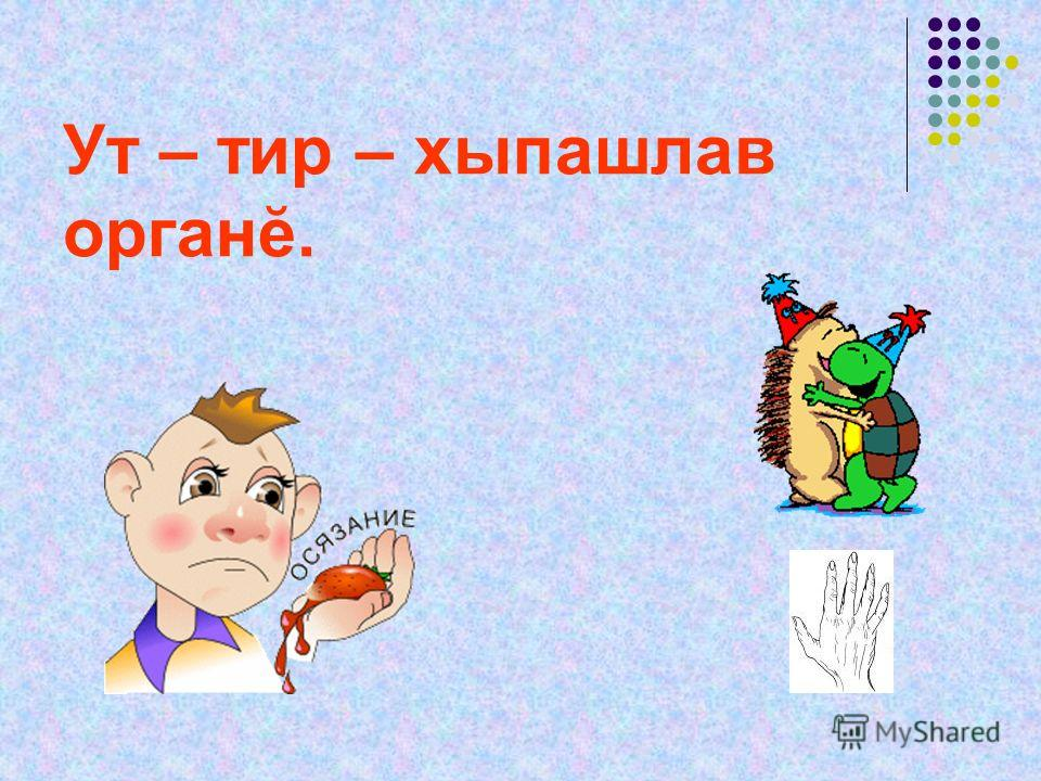 Ут – тир – хыпашлав органĕ.