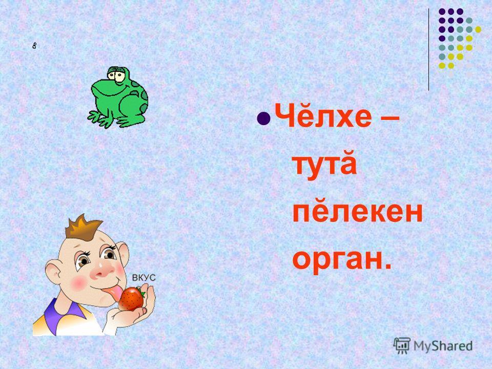 Чĕлхе – тутă пĕлекен орган.