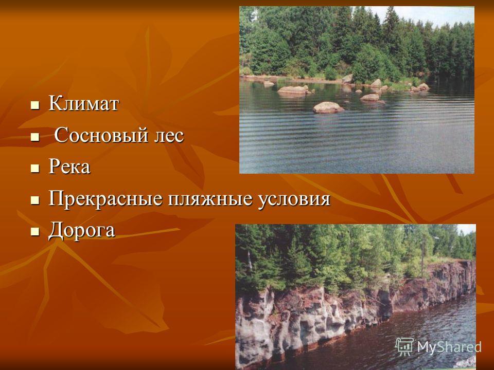 Климат Климат Сосновый лес Сосновый лес Река Река Прекрасные пляжные условия Прекрасные пляжные условия Дорога Дорога