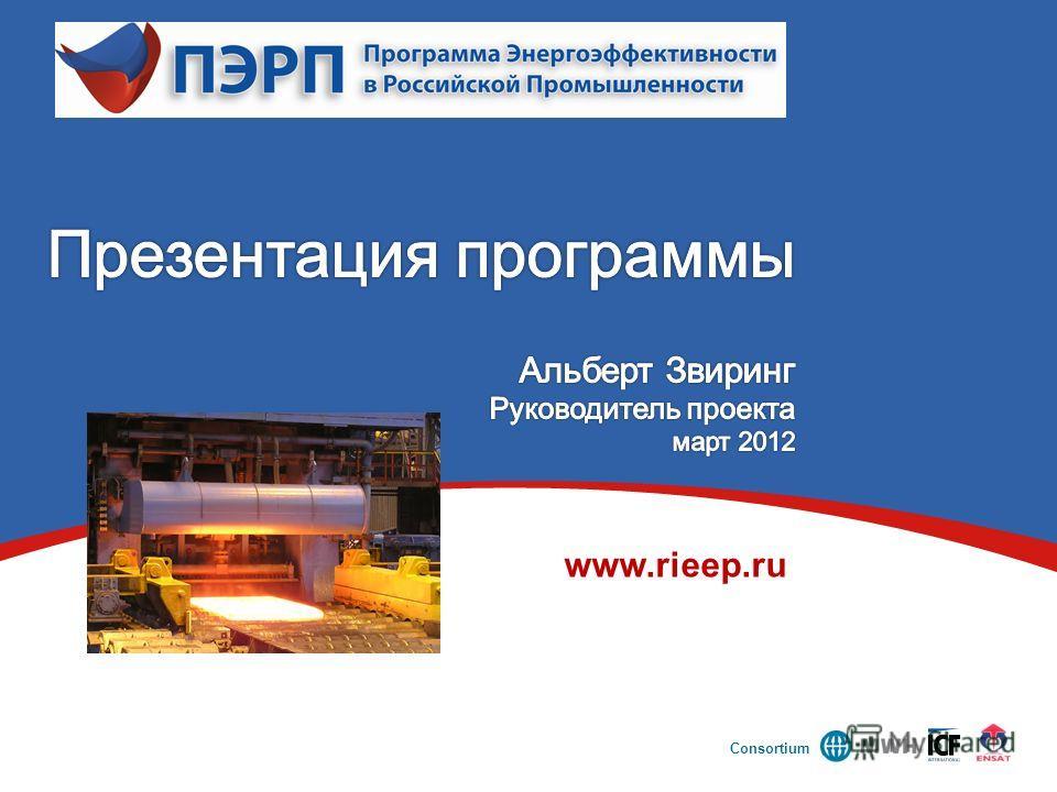 Consortium www.rieep.ru