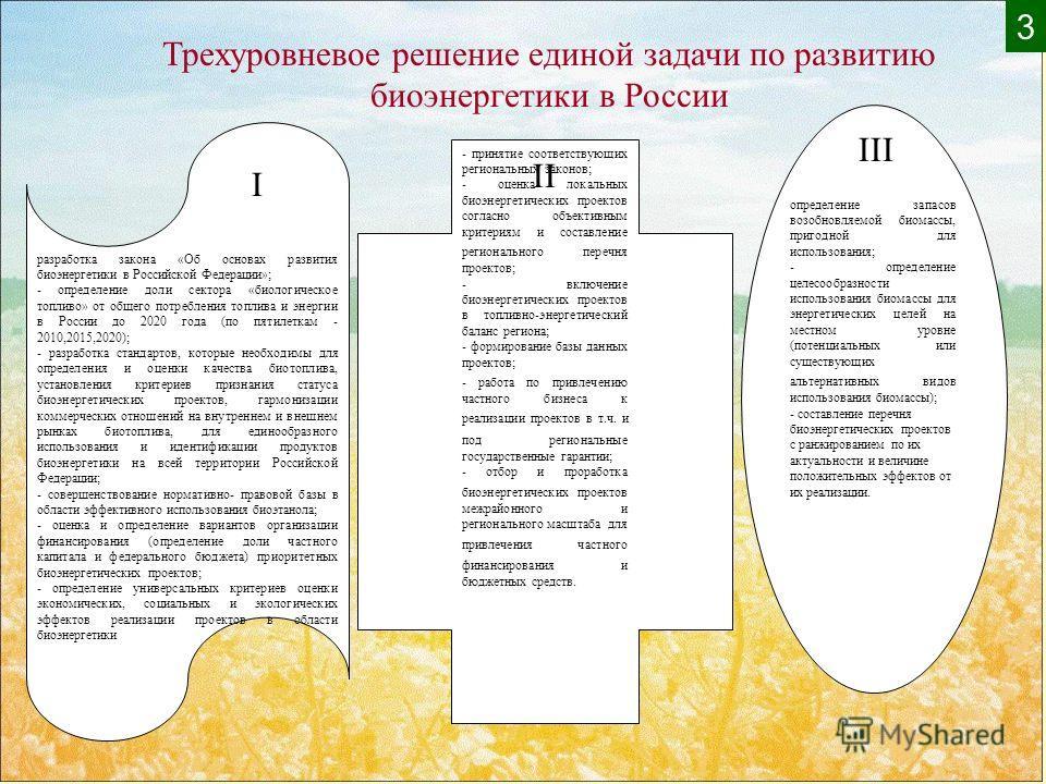 разработка закона «Об основах развития биоэнергетики в Российской Федерации»; - определение доли сектора «биологическое топливо» от общего потребления топлива и энергии в России до 2020 года (по пятилеткам - 2010,2015,2020); - разработка стандартов,