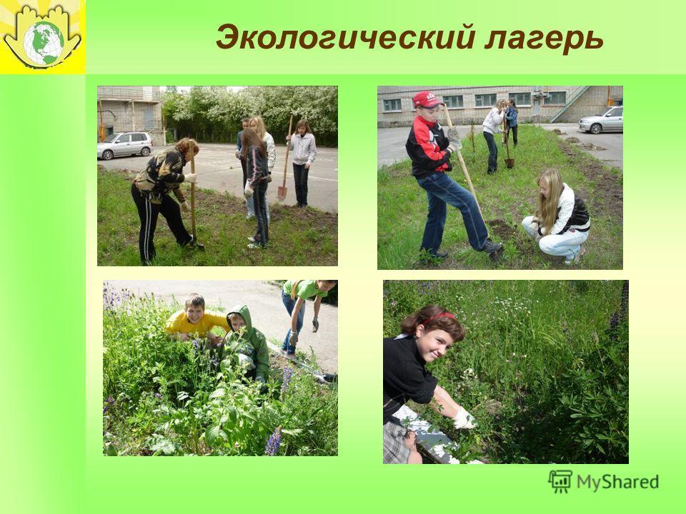 Экологический лагерь