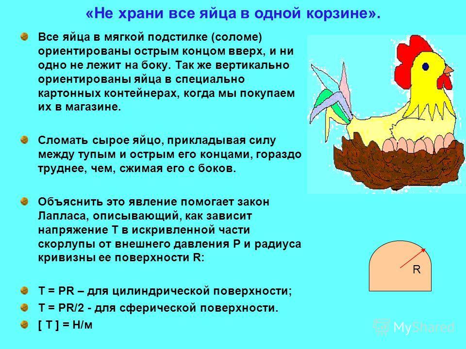 «Не храни все яйца в одной корзине». Все яйца в мягкой подстилке (соломе) ориентированы острым концом вверх, и ни одно не лежит на боку. Так же вертикально ориентированы яйца в специально картонных контейнерах, когда мы покупаем их в магазине. Сломат