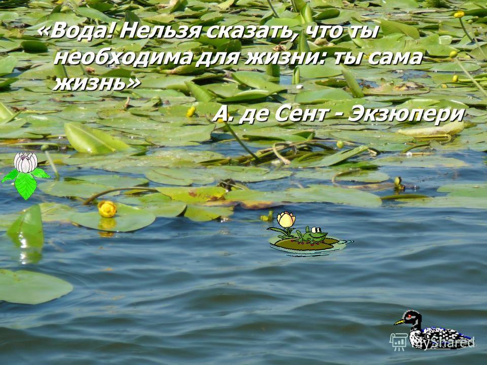 «Вода! Нельзя сказать, что ты необходима для жизни: ты сама жизнь» А. де Сент - Экзюпери