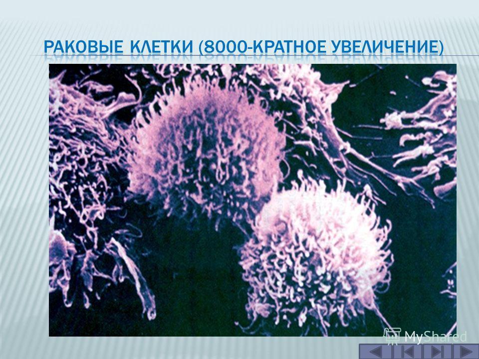 Генные мутации в соматических клетках могут порождать клетки с повышенной скоростью деления, что приводит к образованию опухолей. Опухоли, оказывающие негативное влияние на организм (злокачественные опухоли), являются причиной раковых заболеваний.зло