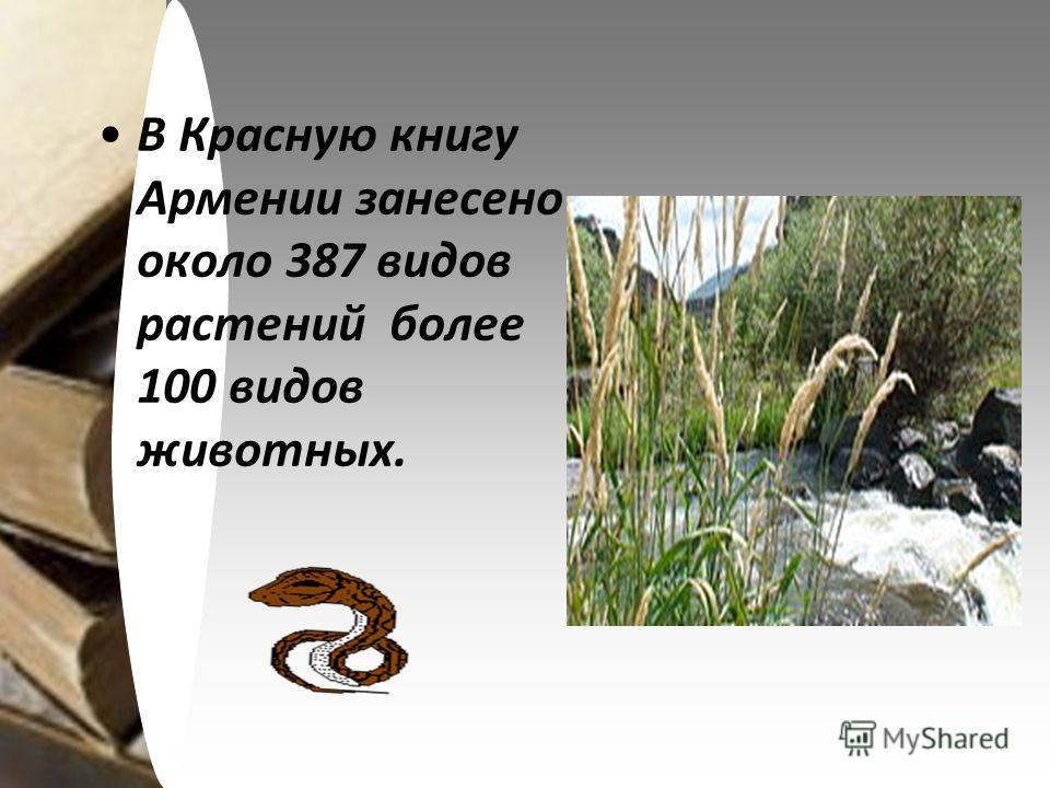 В Красную книгу Армении занесено около 387 видов растений более 100 видов животных.