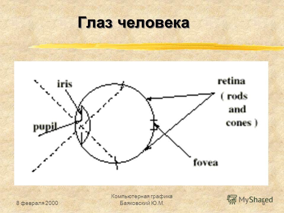 8 февраля 2000 Компьютерная графика Баяковский Ю.М.8 Глаз человека