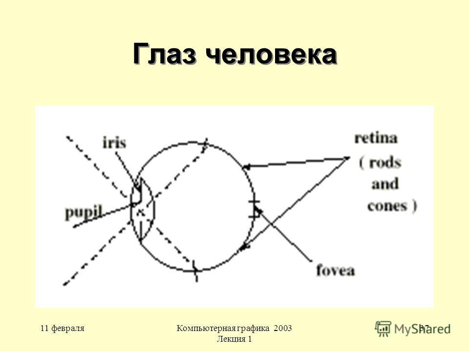 11 февраляКомпьютерная графика 2003 Лекция 1 37 Глаз человека