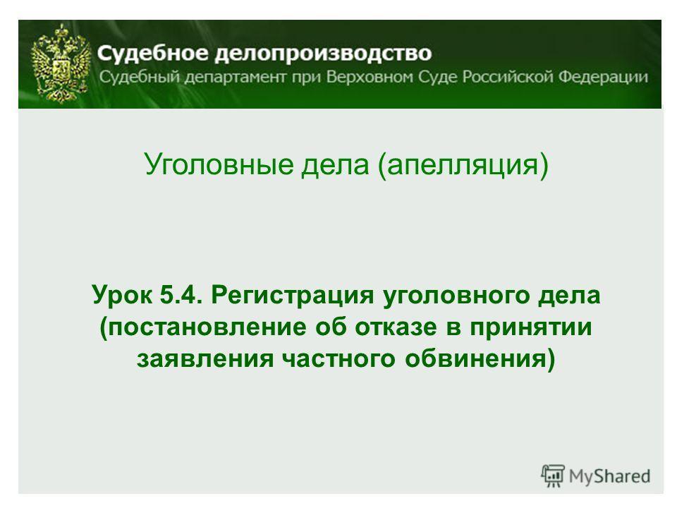 Уголовные дела (апелляция) Урок 5.4. Регистрация уголовного дела (постановление об отказе в принятии заявления частного обвинения)