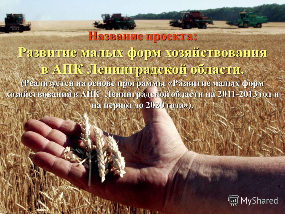 Название проекта: Развитие малых форм хозяйствования в АПК Ленинградской области. (Реализуется на основе программы «Развитие малых форм хозяйствования в АПК Ленинградской области на 2011-2013 год и на период до 2020 года»).
