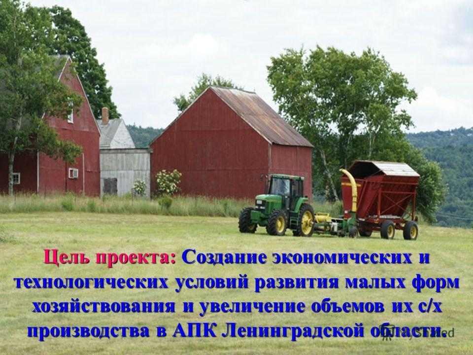 Цель проекта: Создание экономических и технологических условий развития малых форм хозяйствования и увеличение объемов их с/х производства в АПК Ленинградской области.