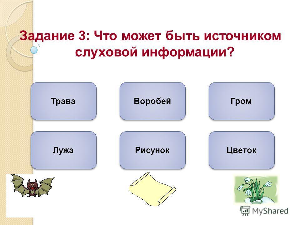 Задание 3: Что может быть источником слуховой информации? Гром Лужа Воробей Трава Рисунок Цветок
