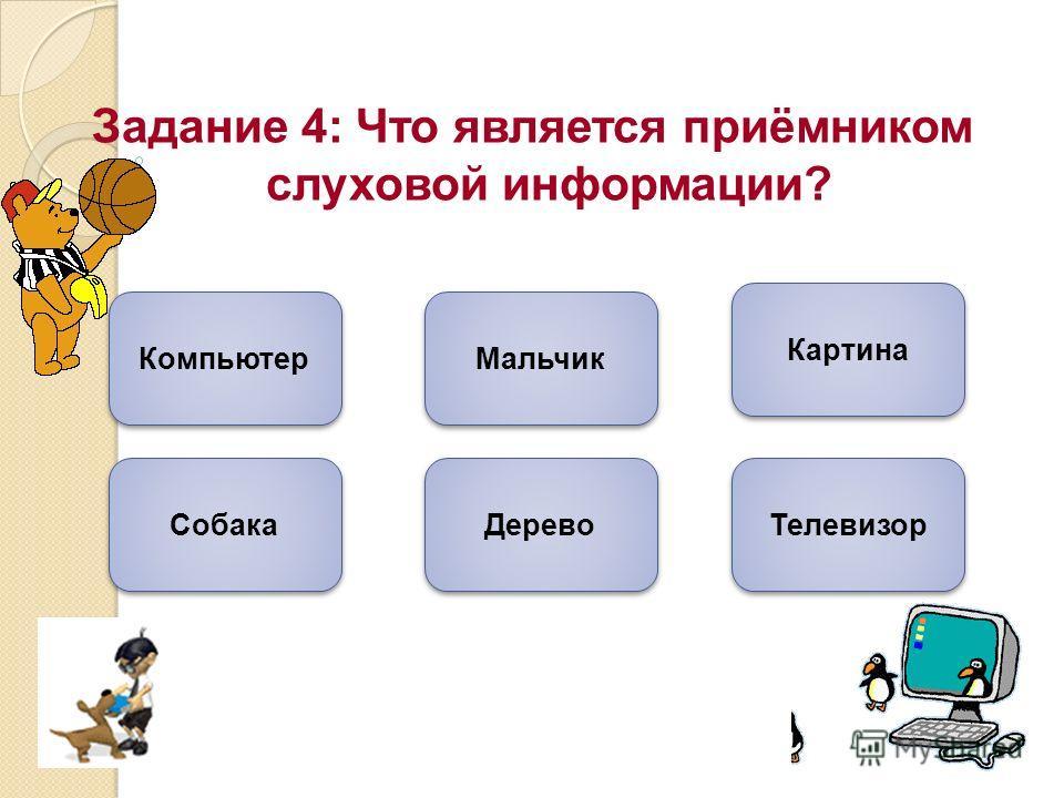Задание 4: Что является приёмником слуховой информации? Компьютер Собака Мальчик Дерево Картина Телевизор