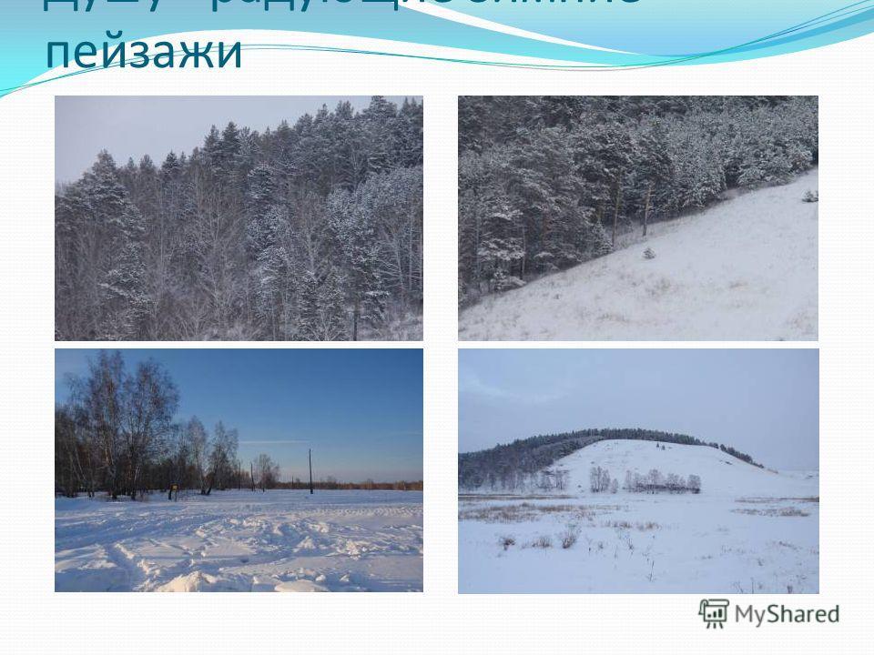Душу - радующие зимние пейзажи