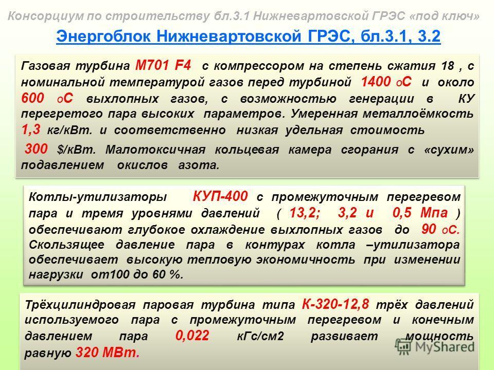 ПГУ-1000 представляет собой трёхвальную ПГУ бинарного типа: двумя газотурбинными установками (ГТУ) типа M701F4 мощностью 315 МВт, Mitsubishi; двумя котлами-утилизаторами (КУ), ОАО