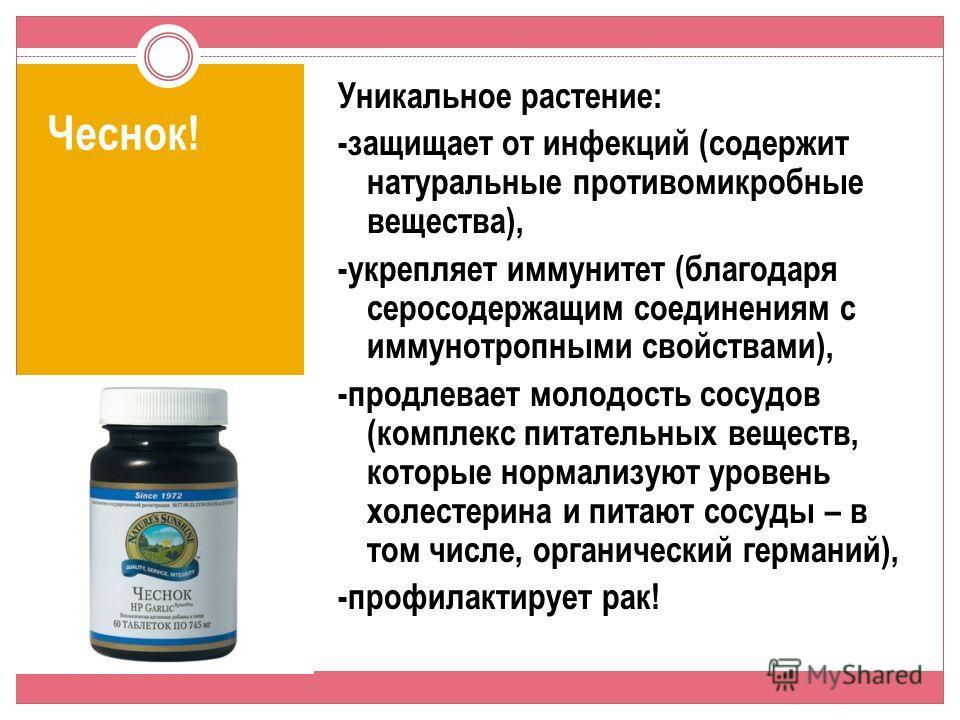 Чеснок! Уникальное растение: -защищает от инфекций (содержит натуральные противомикробные вещества), -укрепляет иммунитет (благодаря серосодержащим соединениям с иммунотропными свойствами), -продлевает молодость сосудов (комплекс питательных веществ,