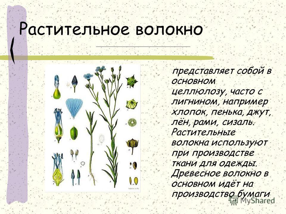 Волокна природного происхождения