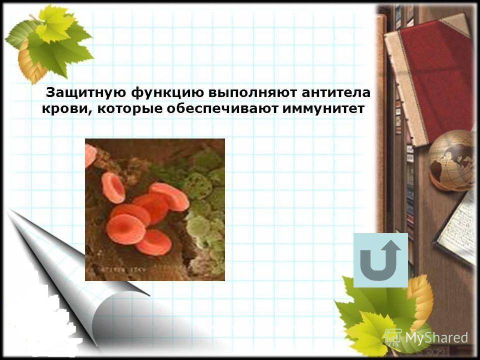 Защитную функцию выполняют антитела крови, которые обеспечивают иммунитет