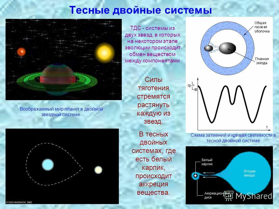 Тесные двойные системы Силы тяготения стремятся растянуть каждую из звезд. В тесных двойных системах, где есть белый карлик, происходит аккреция вещества. Схема затмений и кривая светимости в тесной двойной системе Воображаемый мир планет в двойной з