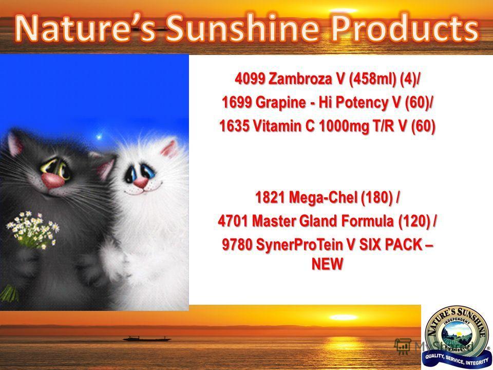 4099 Zambroza V (458ml) (4)/ 1699 Grapine - Hi Potency V (60)/ 1635 Vitamin C 1000mg T/R V (60) 1821 Mega-Chel (180) / 4701 Master Gland Formula (120) / 9780 SynerProTein V SIX PACK – NEW