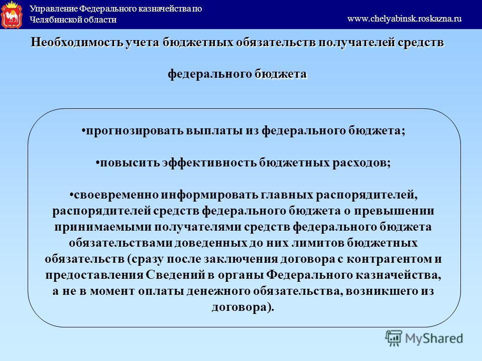 Управление Федерального казначейства по Челябинской области www.chelyabinsk.roskazna.ru прогнозировать выплаты из федерального бюджета; повысить эффективность бюджетных расходов; своевременно информировать главных распорядителей, распорядителей средс