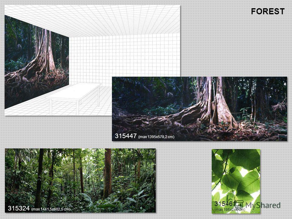 FOREST 315324 (max 1441,5х602,5 cm) 315461 (max 186х248 cm) 315447 (max 1395х578,2 cm)