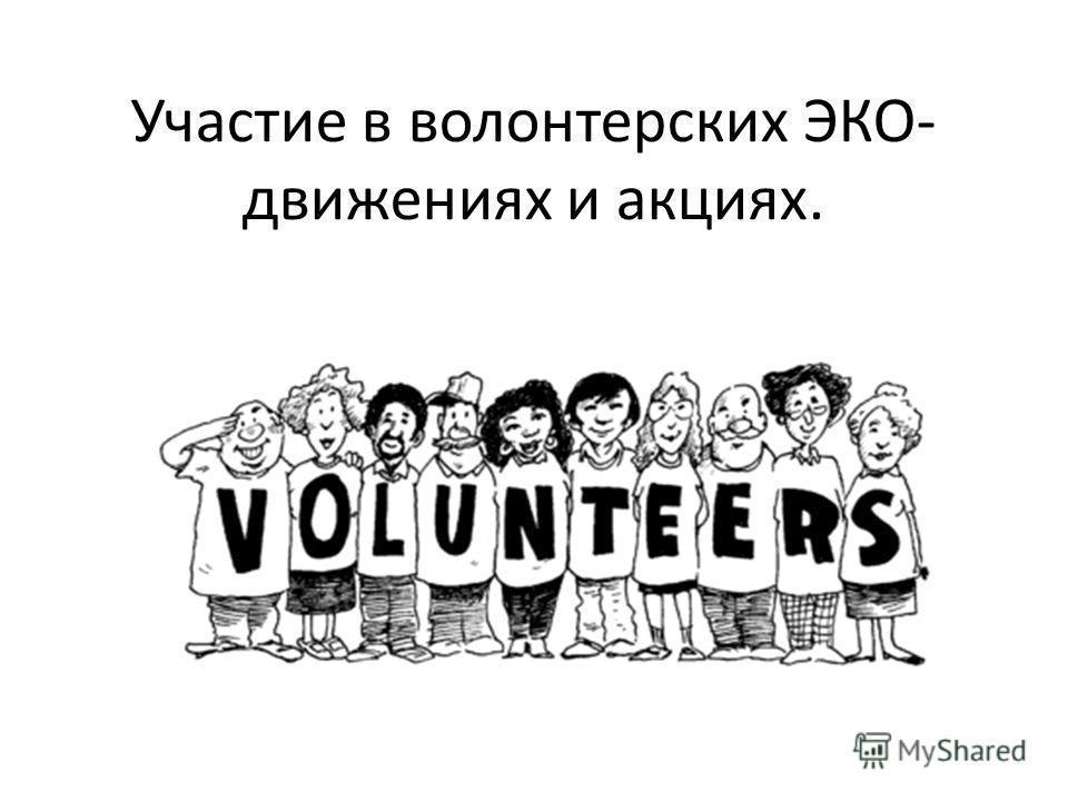 Участие в волонтерских ЭКО- движениях и акциях.